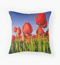 Basking in the evening sun Throw Pillow