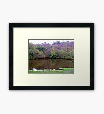 Autumn Colours Framed Print