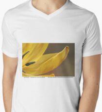 Alluring and... Mens V-Neck T-Shirt