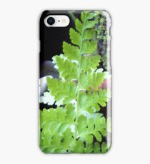 Christmas fern tree for my phone iPhone Case/Skin