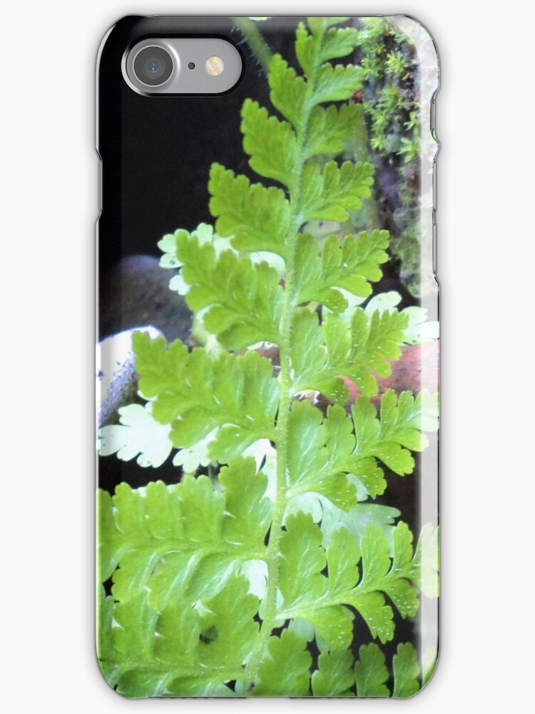 Christmas fern tree for my phone by mariatheresa