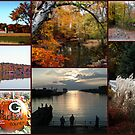 Autumn In Beautiful Wisconsin by kkphoto1