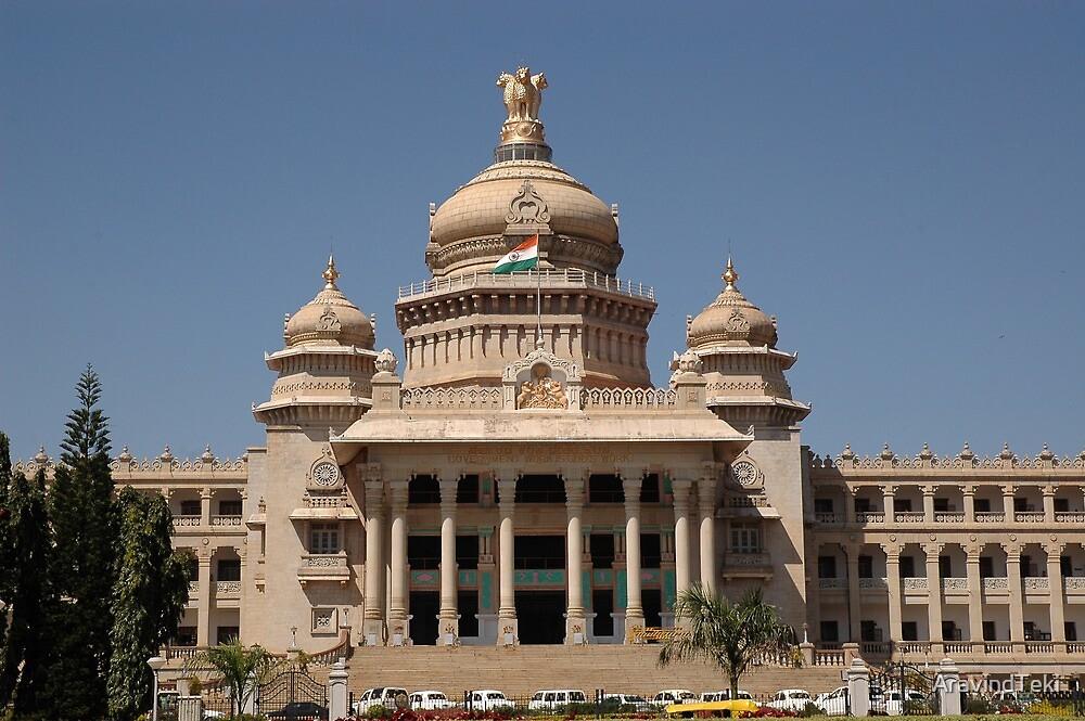 Vidhana Soudha; Bangaluru; Karnataka; India by AravindTeki