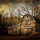 Autumn Approaches by KBritt