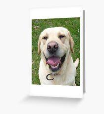 Laughing Labrador Greeting Card