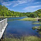 Bear River, Nova Scotia, Canada by Scott Ruhs