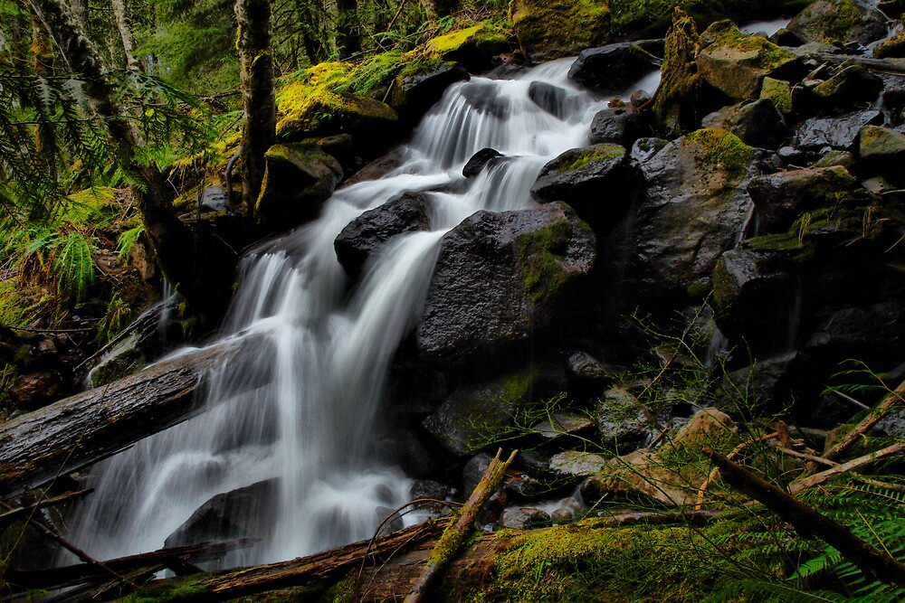Water Fun by Charles & Patricia   Harkins ~ Picture Oregon