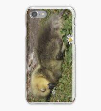 SKEGNESS iPhone Case/Skin