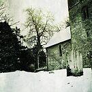 Albury Autumn Snow by Nikki Smith