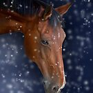 Bay Horse in Snow by Ethiriel