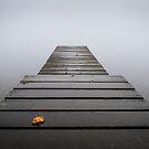 Autumn Mist on Coniston by Martin Griffett