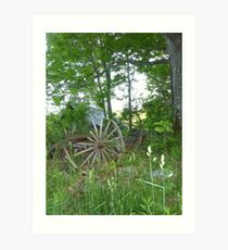 wagon wheel in high grass Art Print