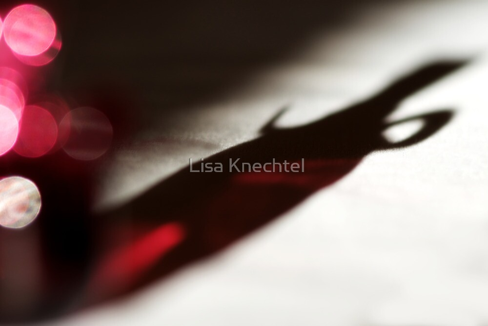 Shadow Play 3 by Lisa Knechtel