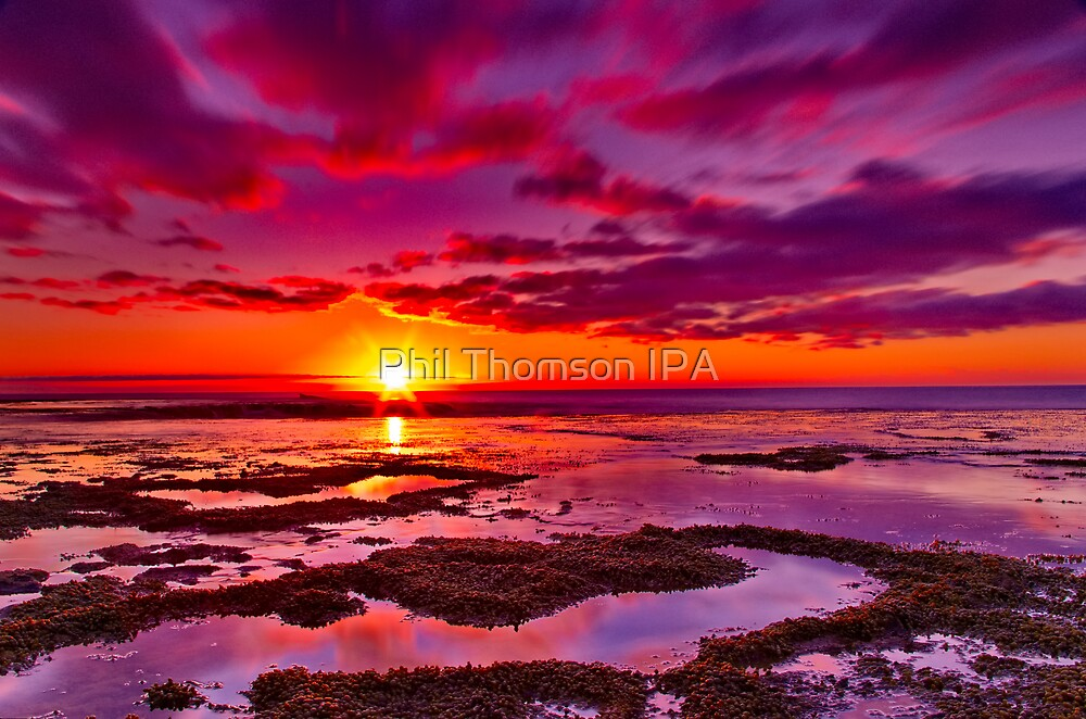 """Roadknight Daybreak"" by Phil Thomson IPA"