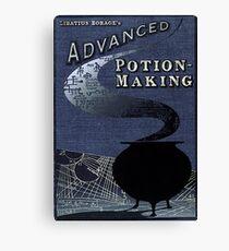 Advanced Potion Making Canvas Print
