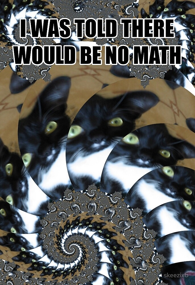 I Was Told There Would Be No Math by skeezix6