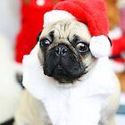 CHRISTMAS PUG by Richray
