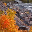Autumn in the Ruins by Scott Kueffner