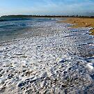 Blacksmiths Beach, NSW by Robyn Selem