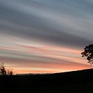 Dawn over Bowland by mikebov