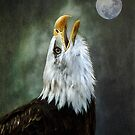 Eagle Calling by Brian Tarr
