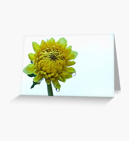 Sunshine and Showers Greeting Card