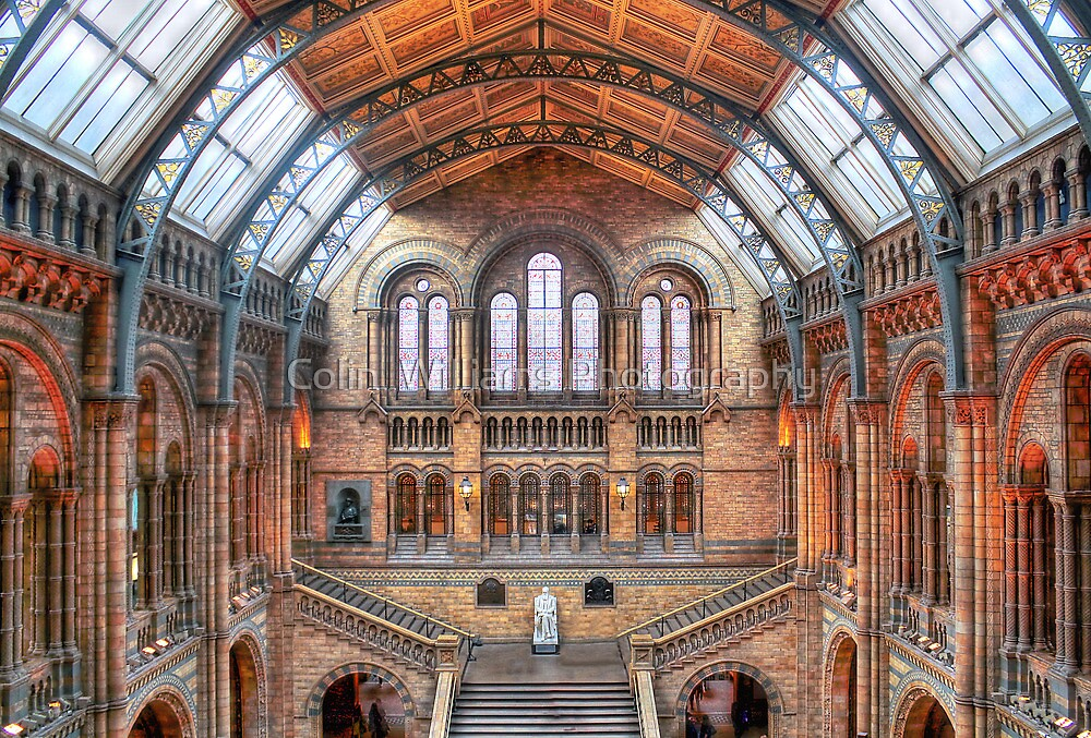 Natural History Museum - HDR by Colin  Williams Photography