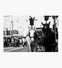 Mr and Mrs Horse Photographic Print