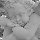 cherub by Megan Warren