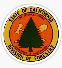 California Division of Forestry Sticker