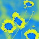 Wildflower Dreams by Mechelep