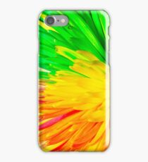 multi colored flower iPhone Case/Skin