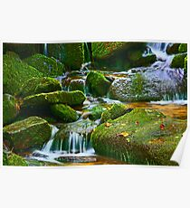 MOSSY ROCKS AND CASCADES Poster
