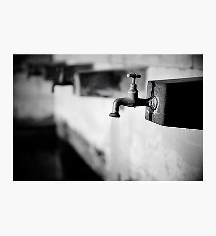 Water instinct Photographic Print