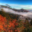 autumn morning on blue ridge parkway by ALEX GRICHENKO