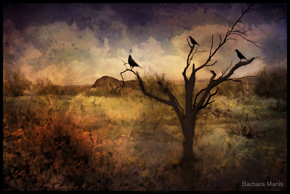 A Desert Dream by Barbara Manis