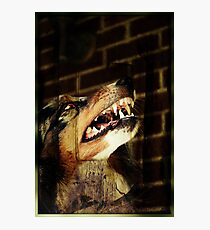 Werewolf Sam Photographic Print