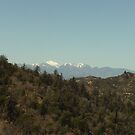 Snow On Mount Baldy by Bearie23