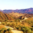 Flinders Ranges Panorama by Michael John