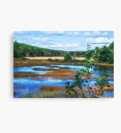 The Magic of Acadia Canvas Print