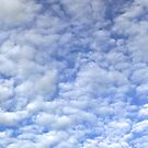 Dappled cloud in a blue sky for iPhone by Philip Mitchell