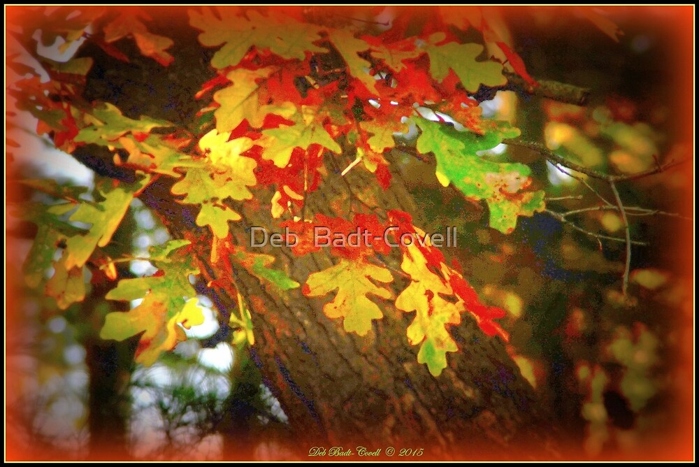 Oak Leaves in Autumn by Deb  Badt-Covell