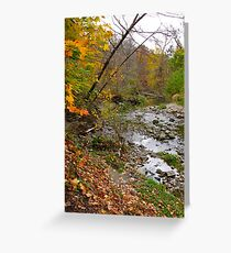 Colourful scape Greeting Card