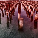 Prince's Pier Port Melbourne by Pauline Tims