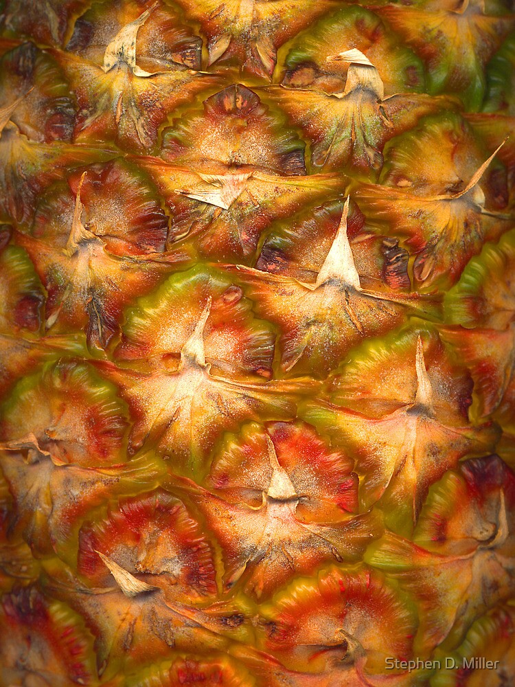 Pinapple - Close-Up by Stephen D. Miller