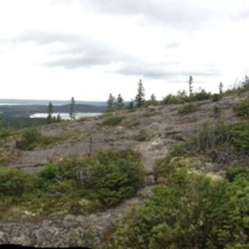 Newfoundland View by DerBen