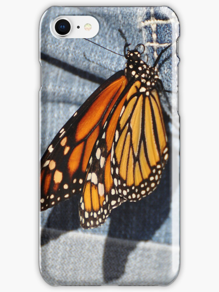 Butterfly on Jeans by Savannah Gibbs