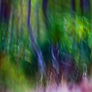 Abstract Whispers on the Wind by Michelle Wrighton