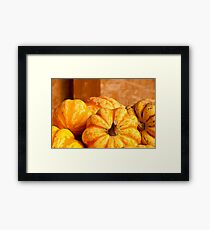 Fall Harvest Framed Print