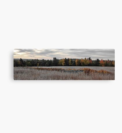 Fieldstone and Meadow Grass Canvas Print